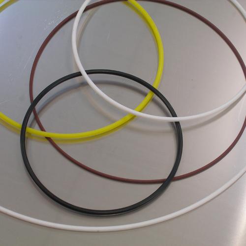 O-ring-in-PTFE-FFGI